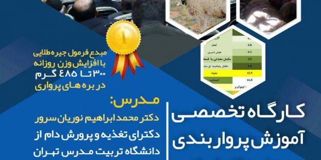 کارگاه تخصصی آموزش پرواربندی بره های نژاد ایرانی
